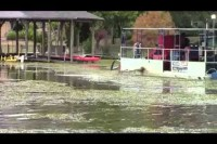 Watermower at Cypress Black Lake