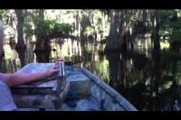 Barbara Goes Fishing