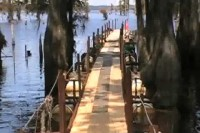 The Dock Part 2