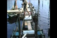 Re-Building The Dock