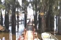 Sunday 9-2-12 Dock Work